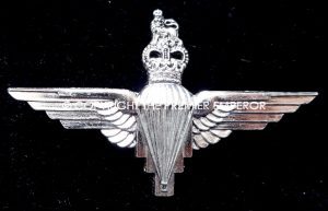 British Anodised (Staybright) Parachute Regiment cap badge.